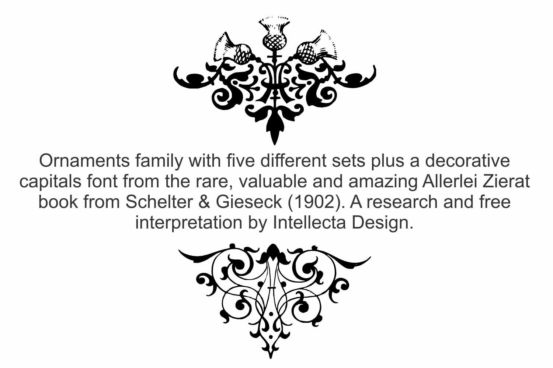 Allerlei Zierat (PACK 5 FONTS) example image 6
