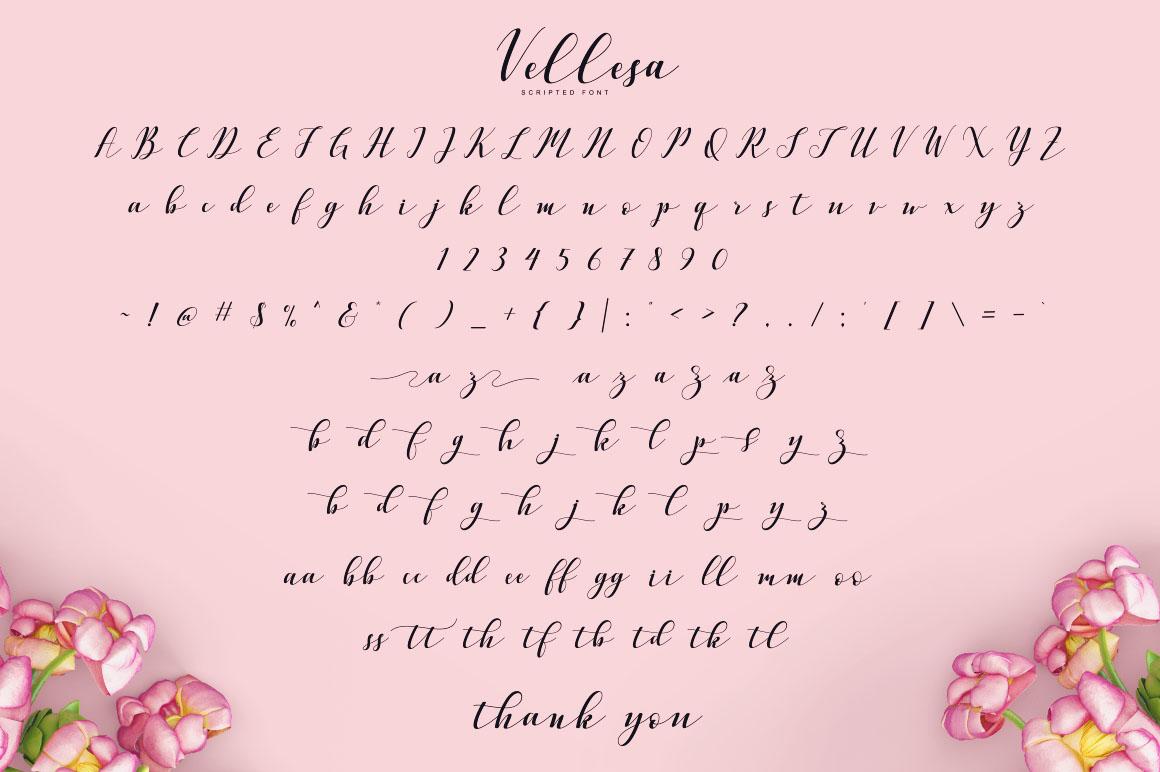 Vellesa Script example image 5