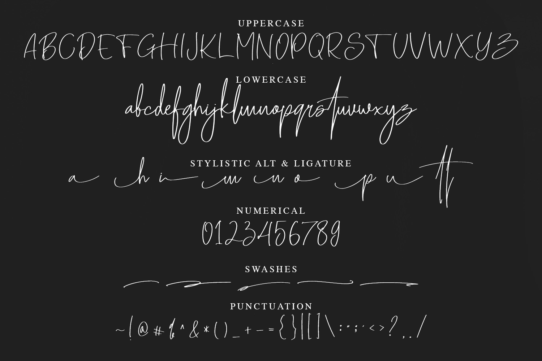 Senoteria Handwritten Signature Font example image 6