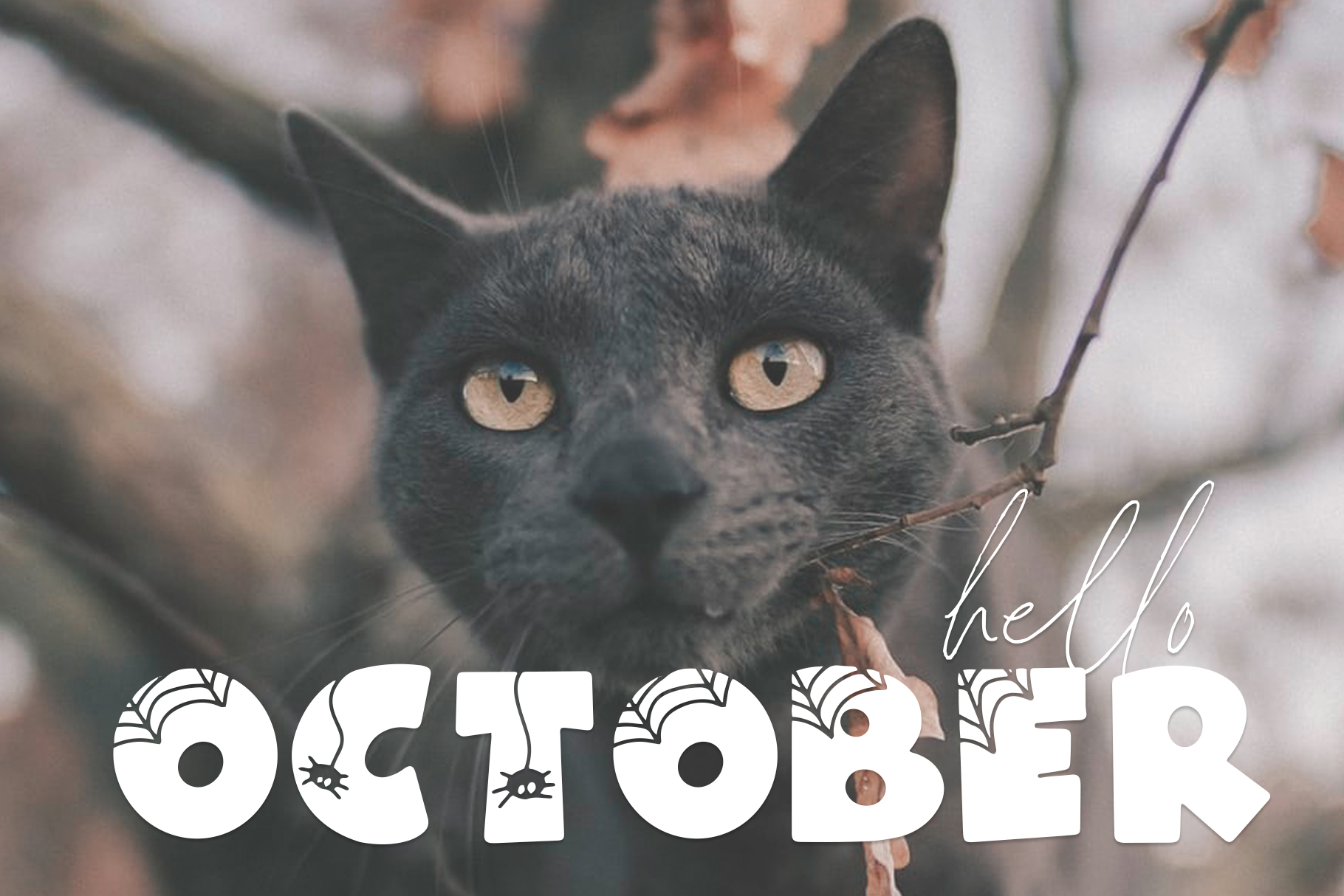 Spooky - A Quirky Halloween Font example image 8