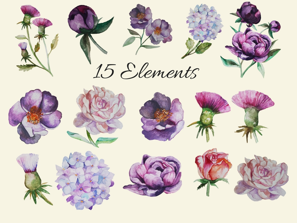 Romantic Peonies Hand Painted Clip Art Set example image 9