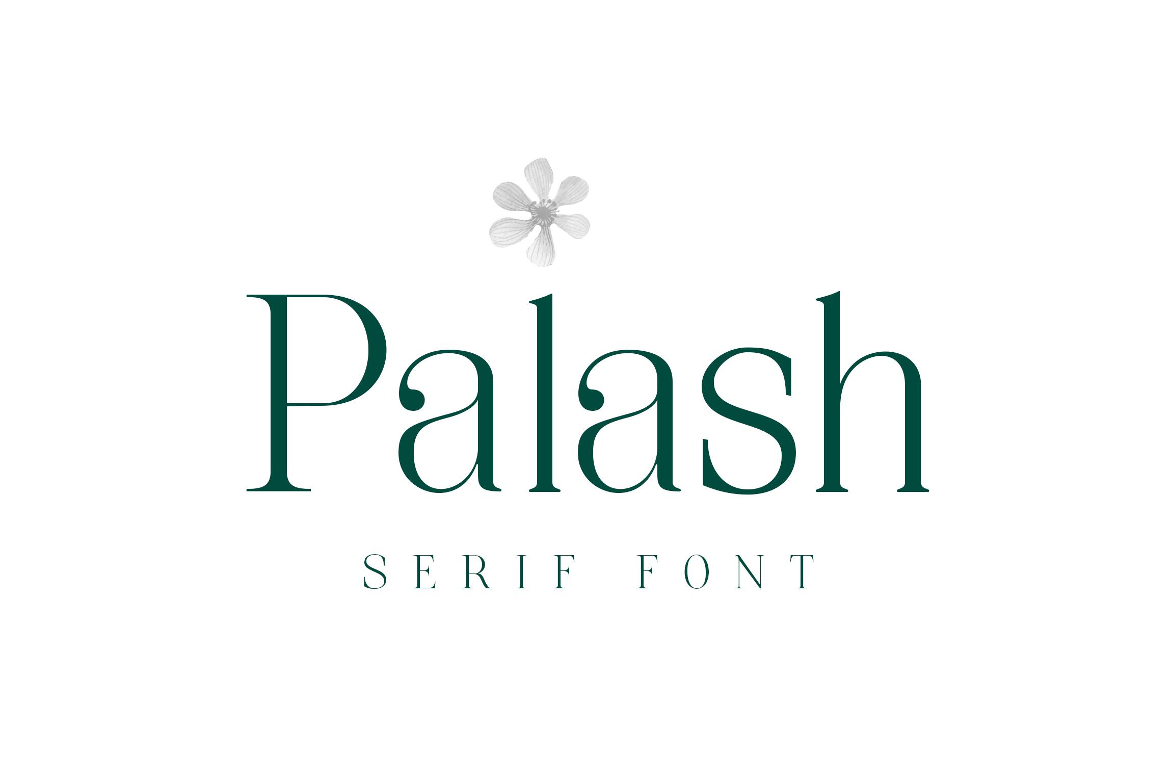 Palash - Serif Font example image 6