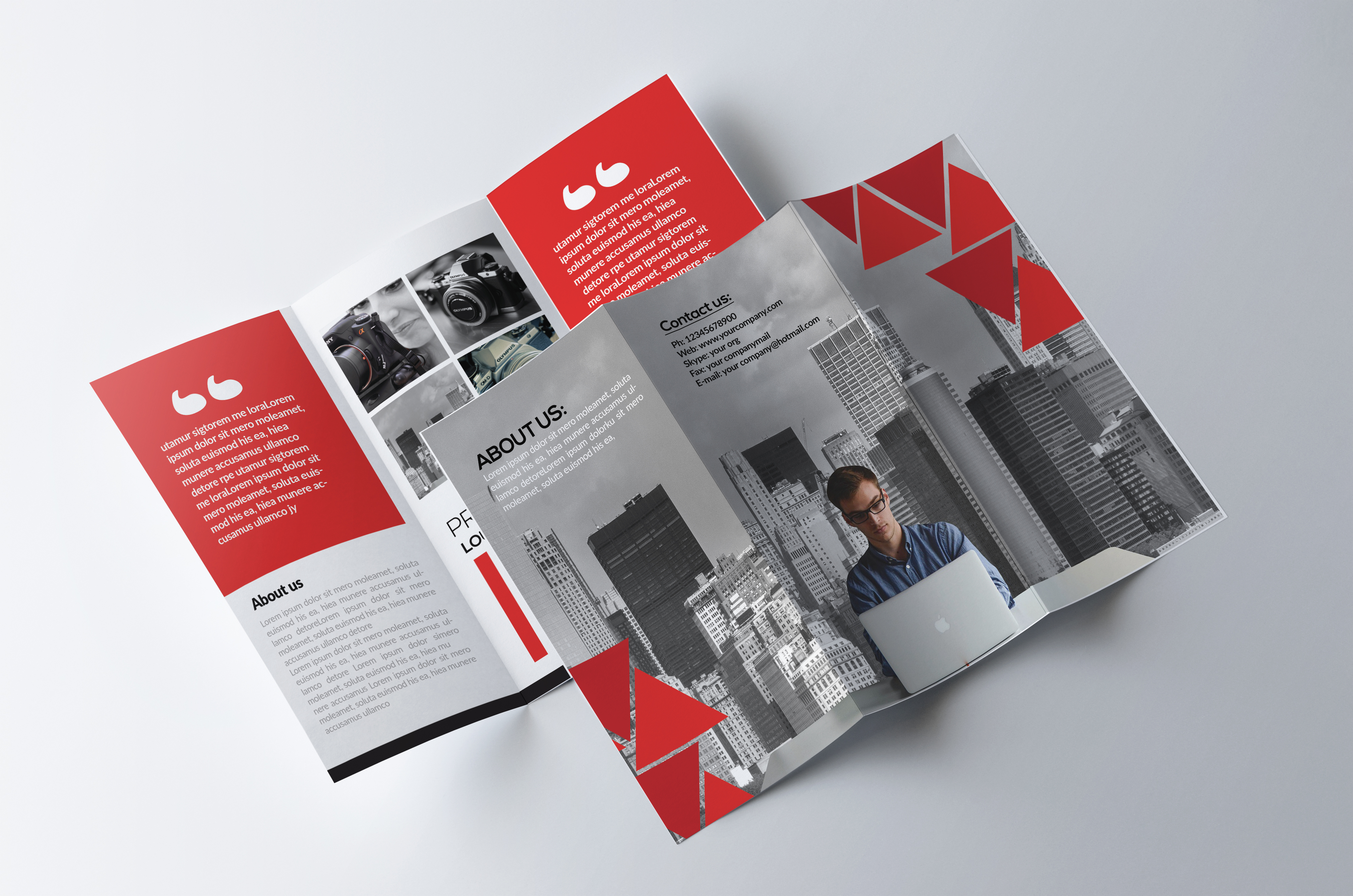 5 Trifolds Brochures Templates Bundle example image 5