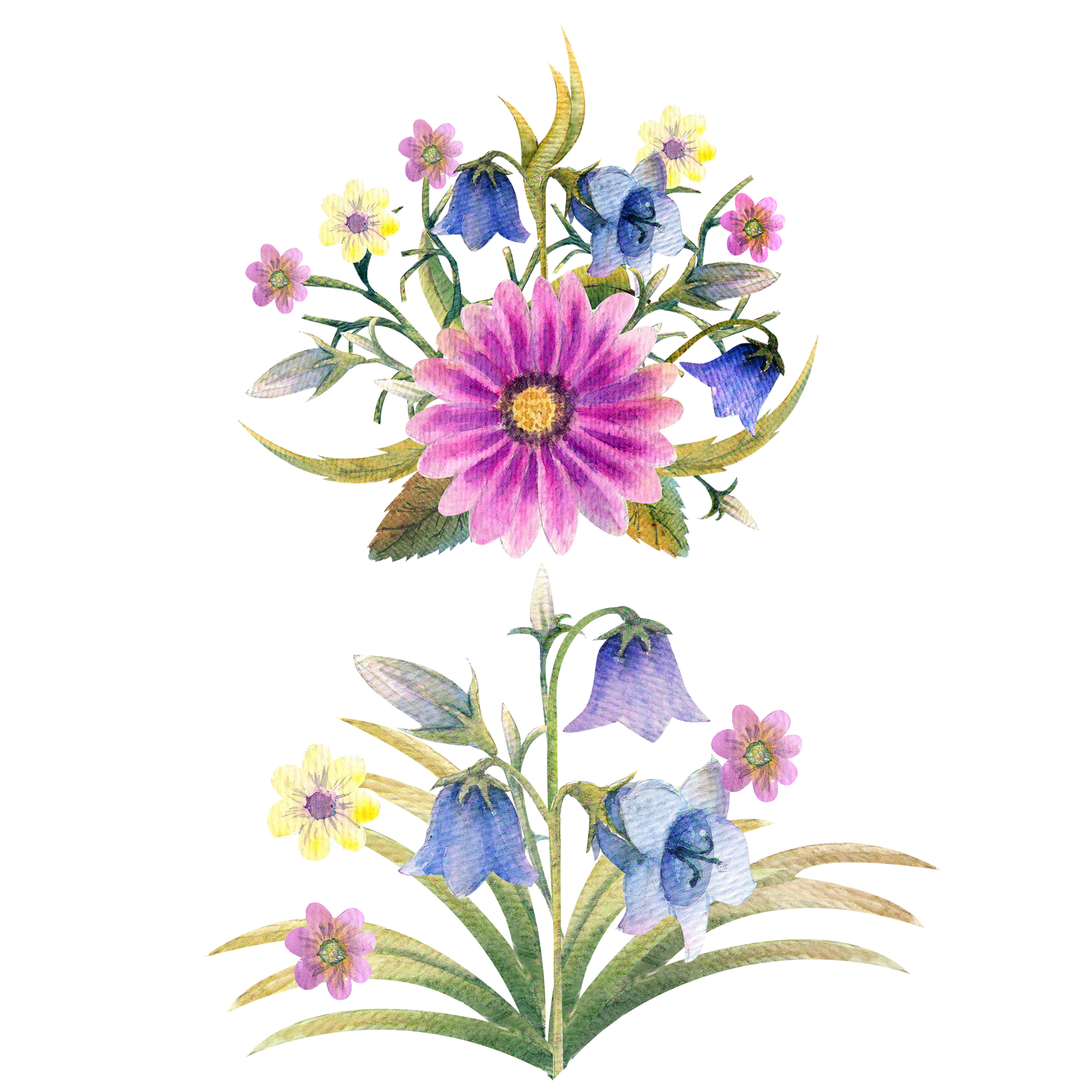 Wild flowers watercolor example image 7