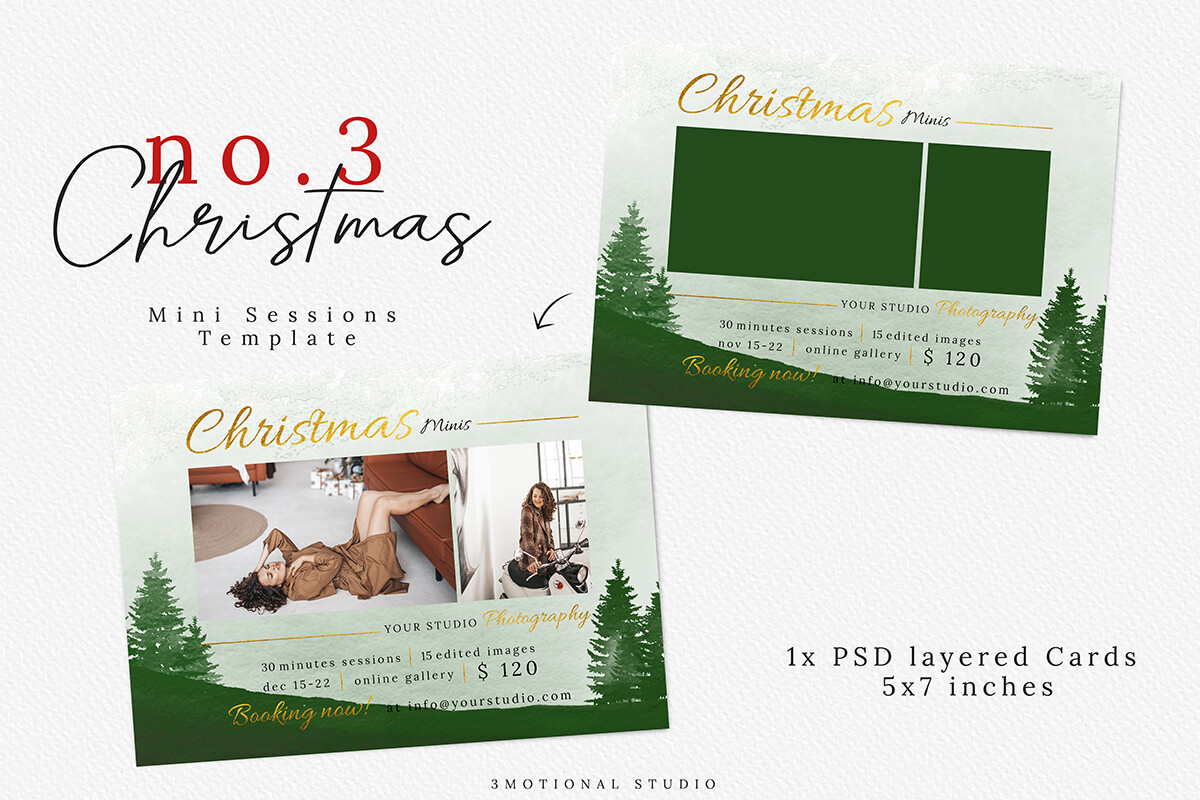 Christmas Mini Session Template 03 example image 5