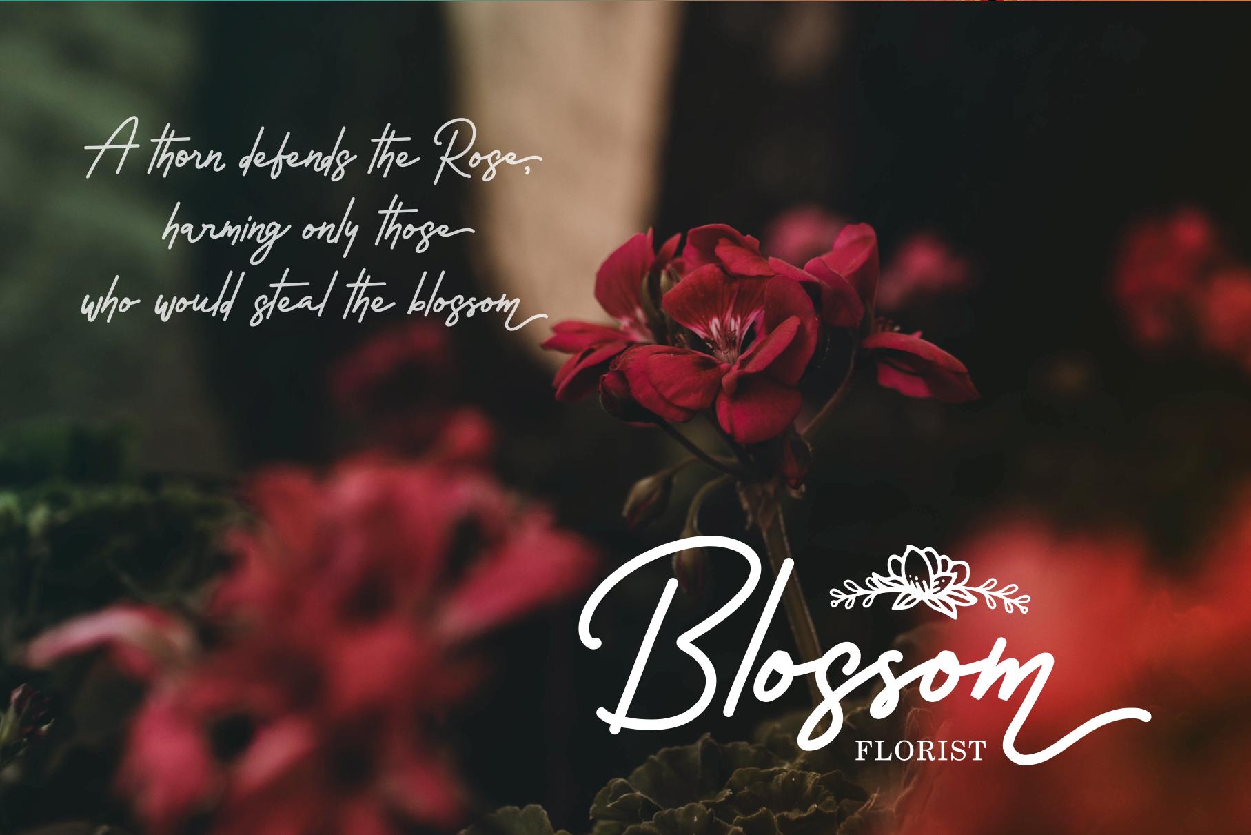 Rossela Signature Font & Extras example image 9