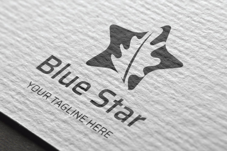 Star Shape Logo Design example image 2