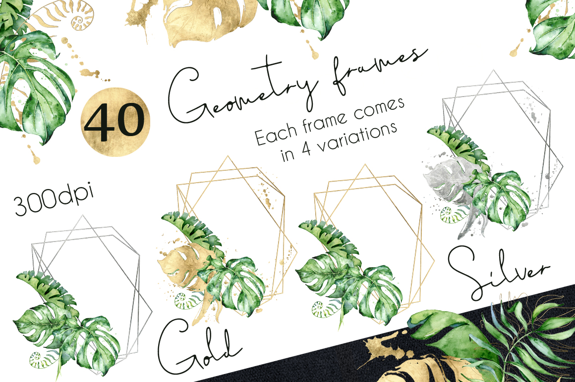 Geometry Tropical Frames creator example image 2