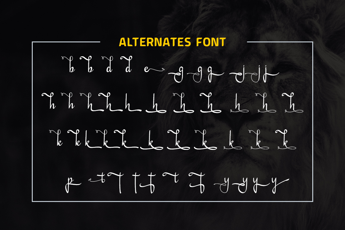 Daesy Script Challigrapy Font example image 9