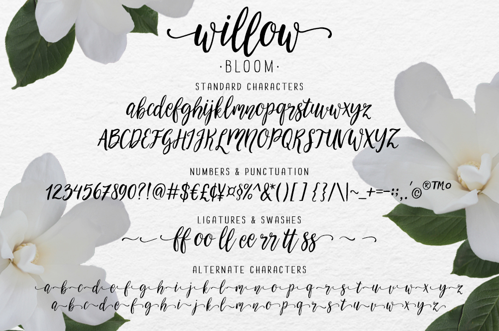 Modern Calligraphy Font Willow Bloom Example Image 5
