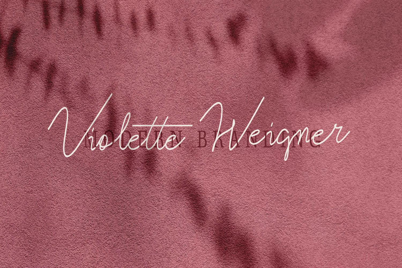 Violitta Signature typeface example image 3