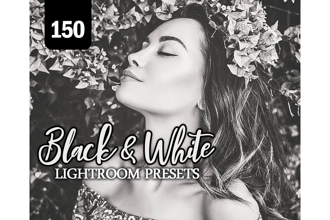 Black White Lightroom Presets Vol 2 example image 1