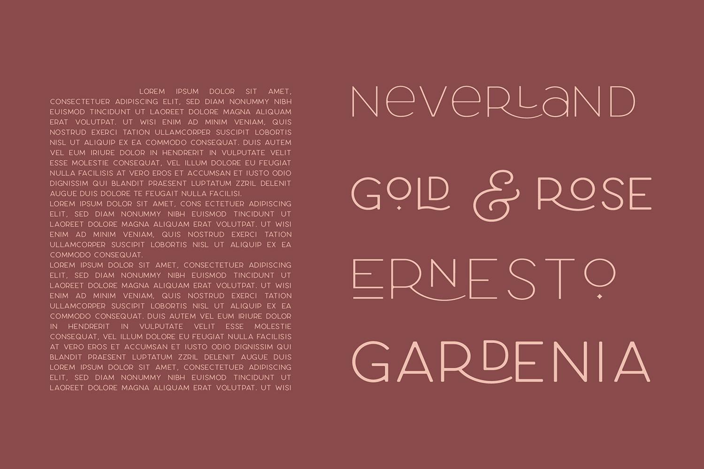 Larosa Sans- 7 Elegant Typeface example image 9