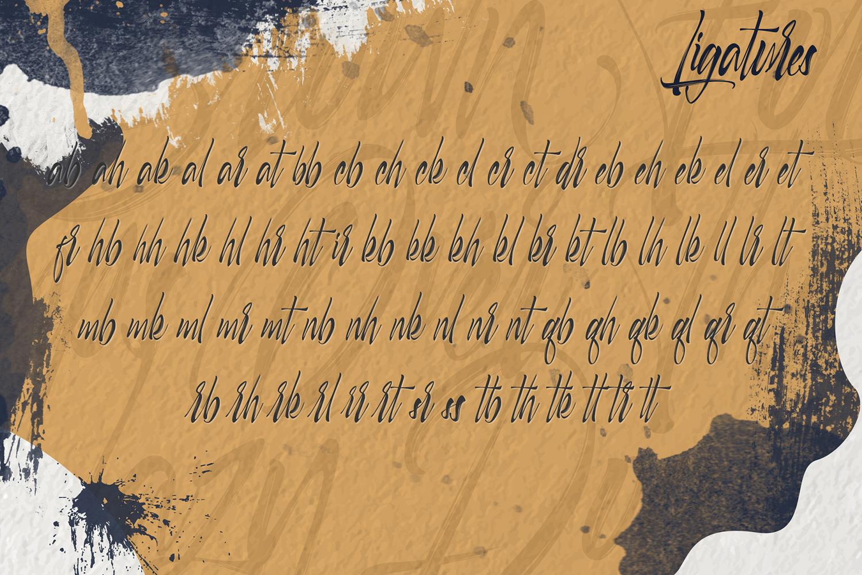 Selfakia Brush Font example image 8