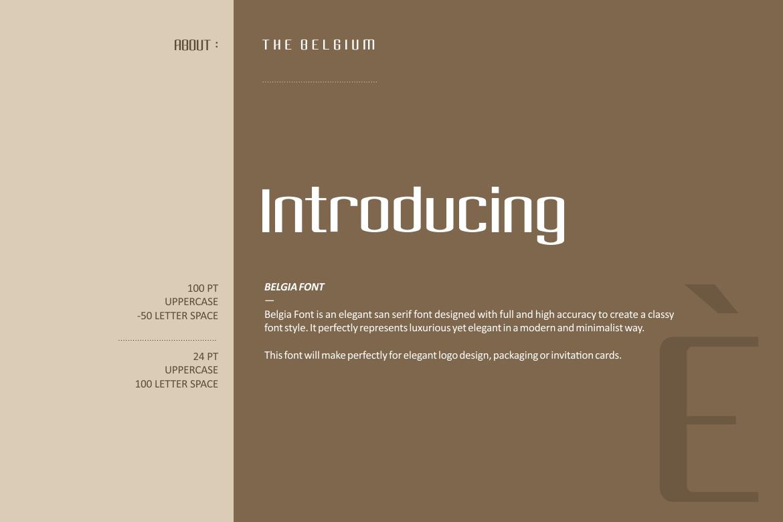 Belgia Font example image 2