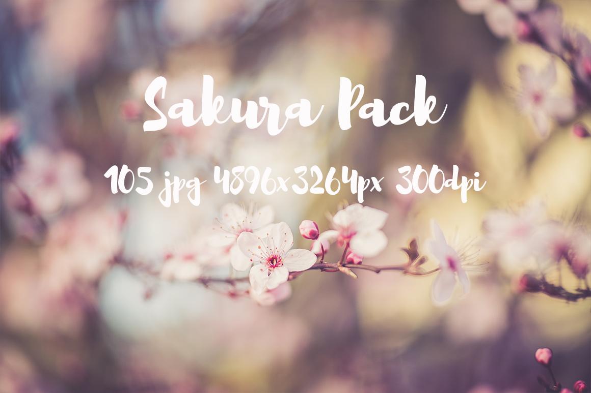 sakura photo pack example image 2