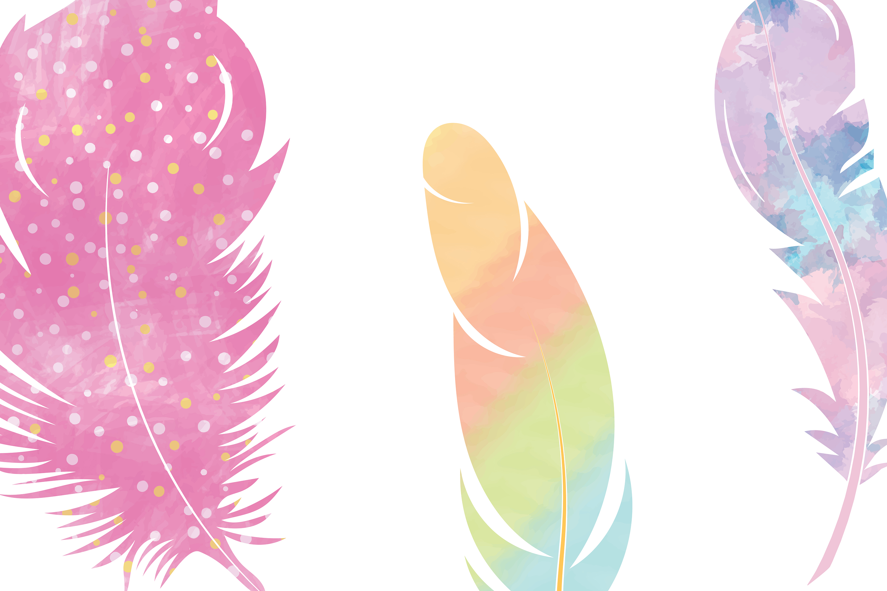 Watercolor Feathers | svg files example image 3