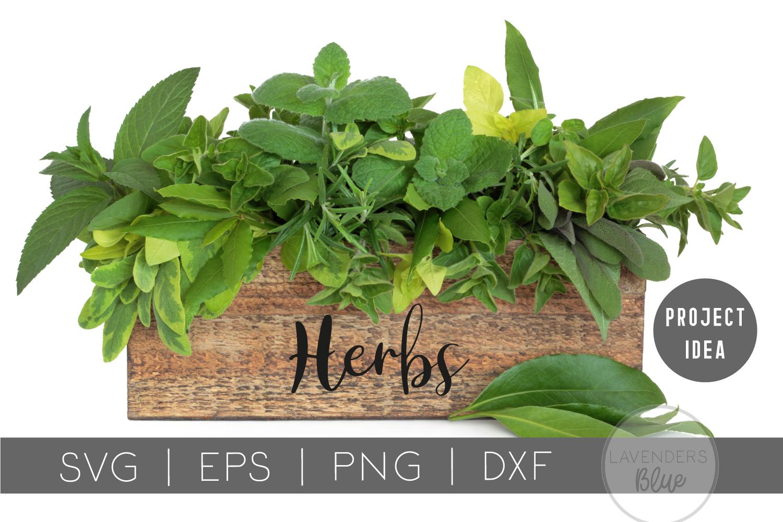 Herb Bundle   Herb Name Label SVGs   11 Herb names example image 2