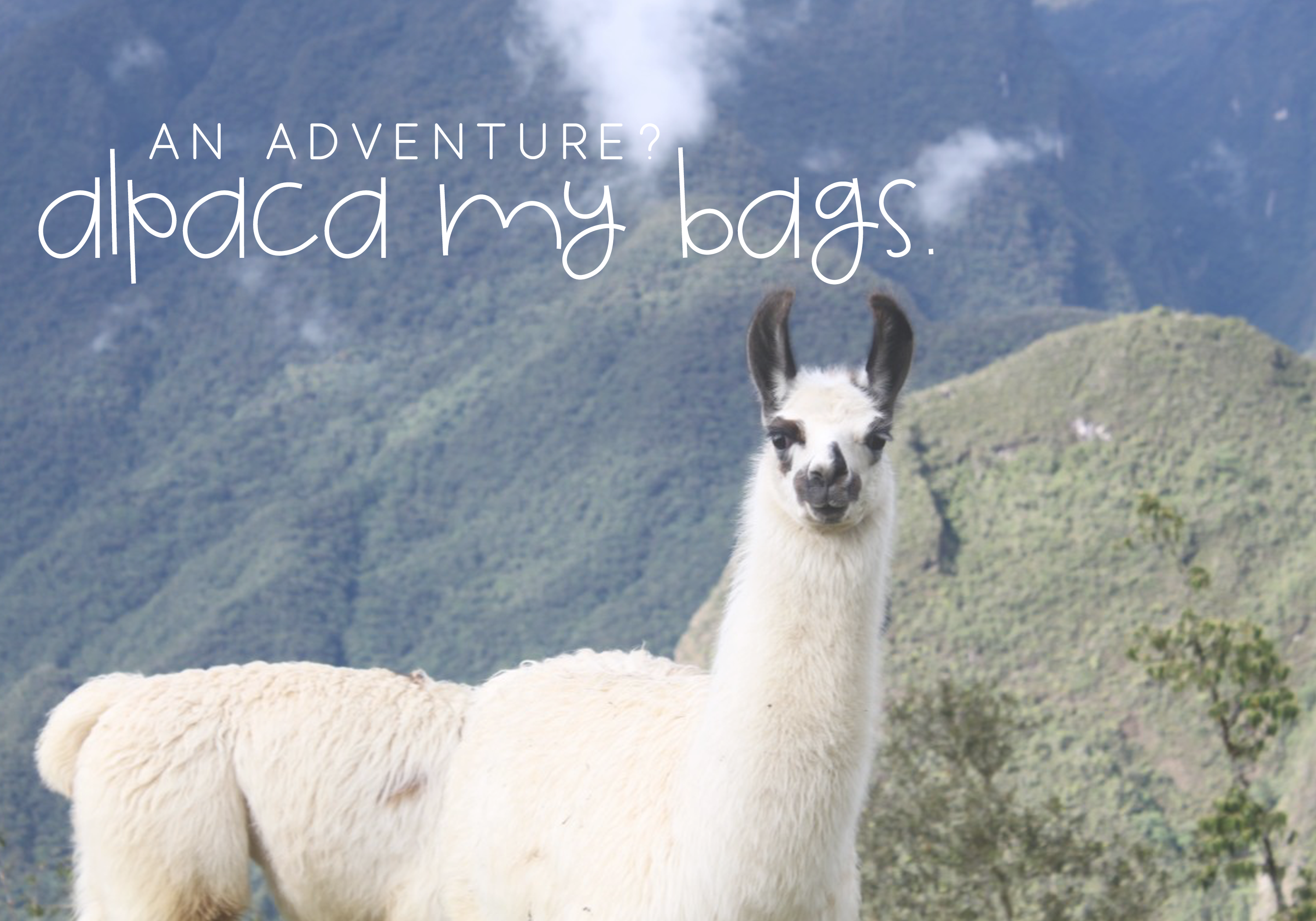 Alpaca My Lunch - Fun and Quirky Font example image 4