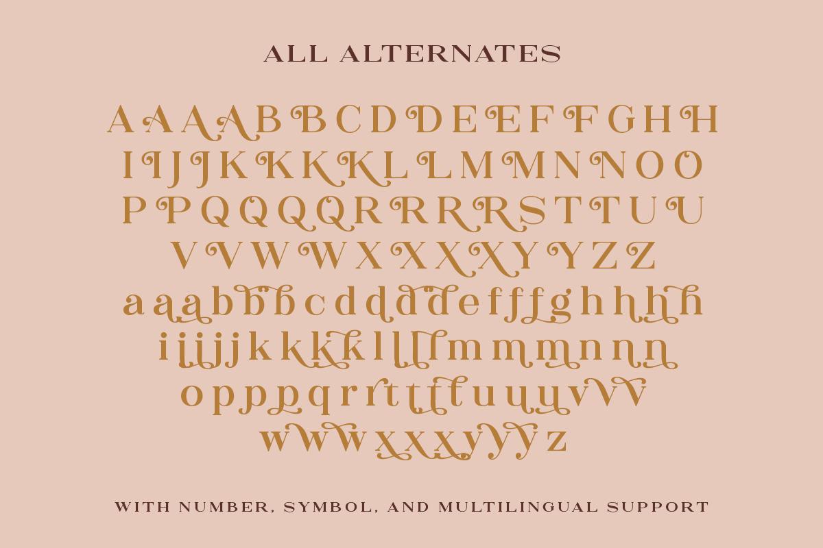 The Rankings Serif example image 9