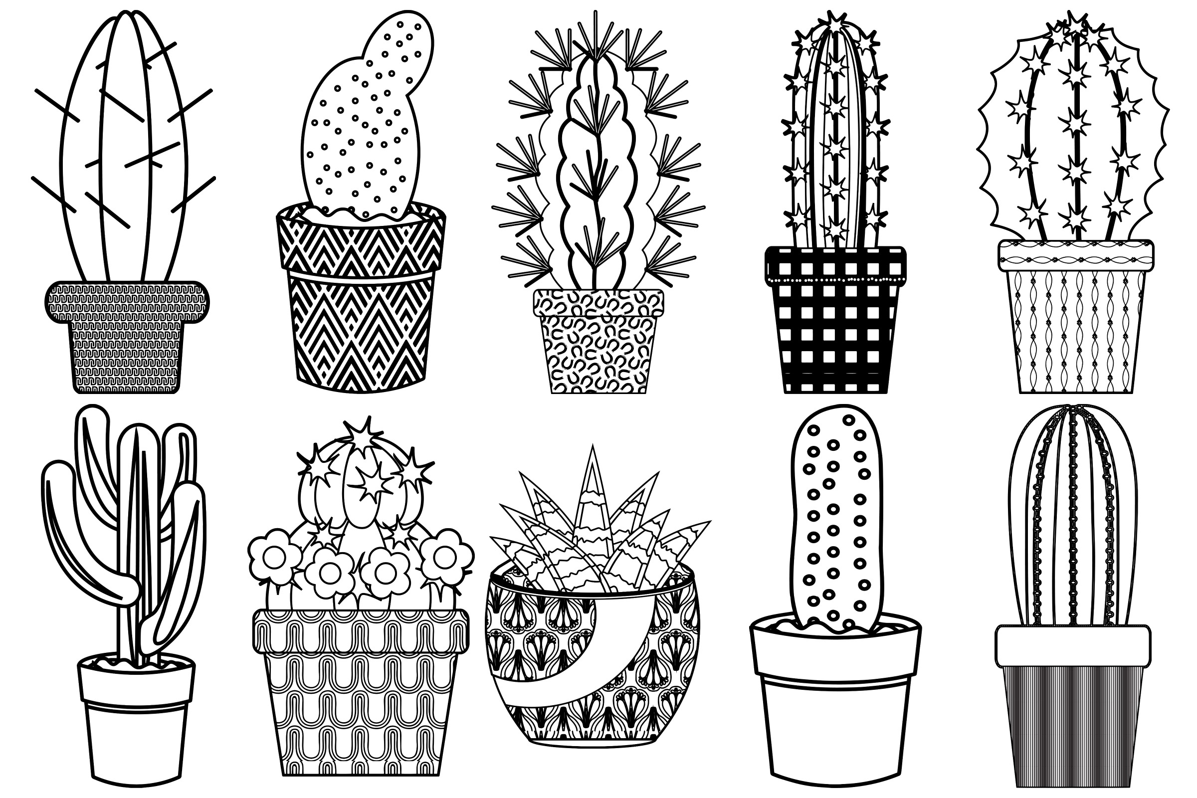 Cactus and Succulents AI EPS PNG, Vector Clip Art example image 3