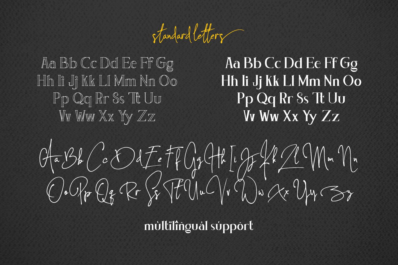 Concetta Kalvani // Signature & Serif example image 10