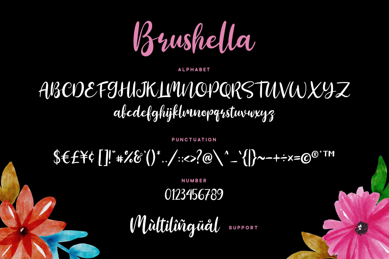 Brushella - Beautiful Script Font example image 6