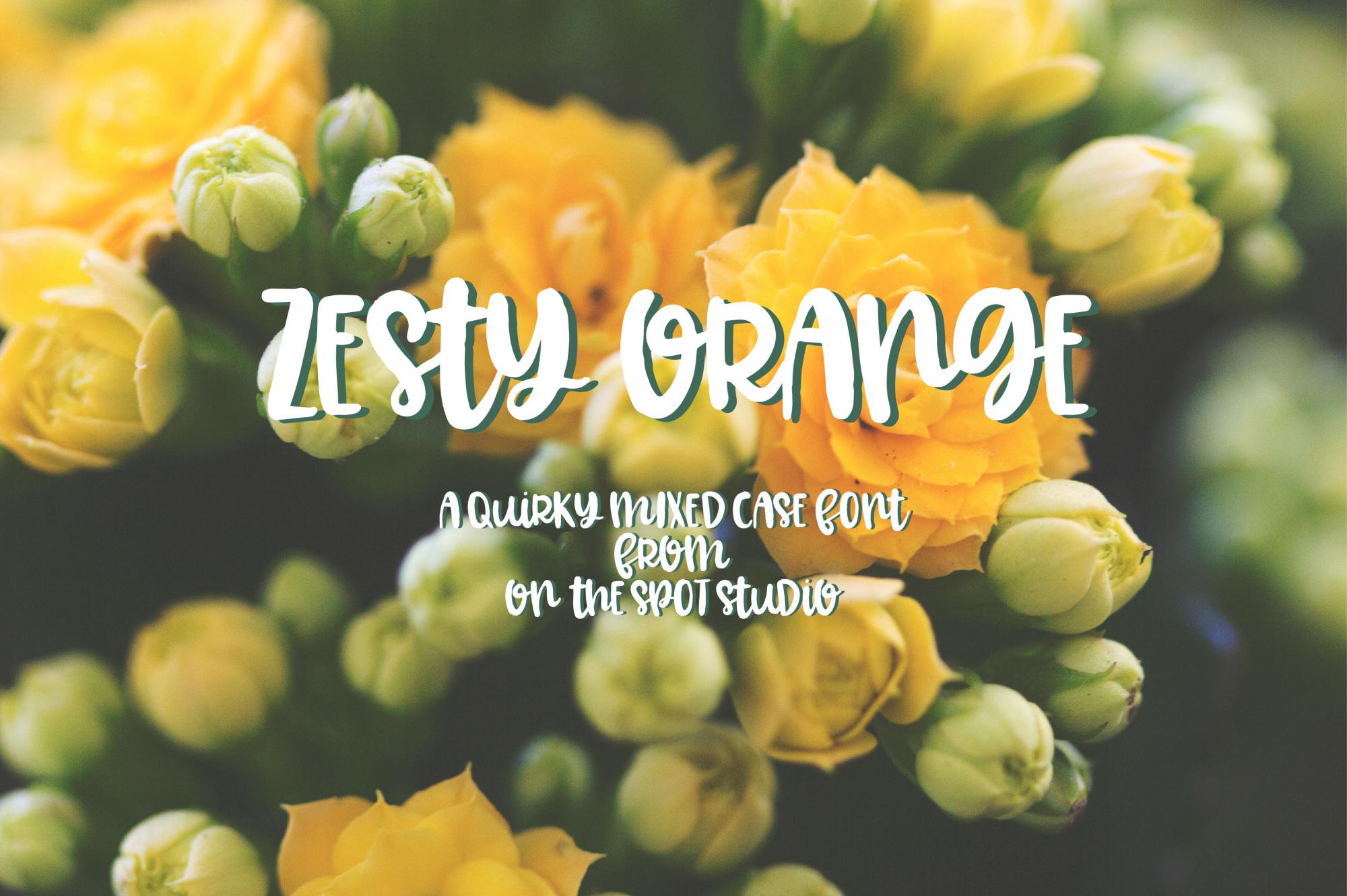 Zesty Orange example image 1
