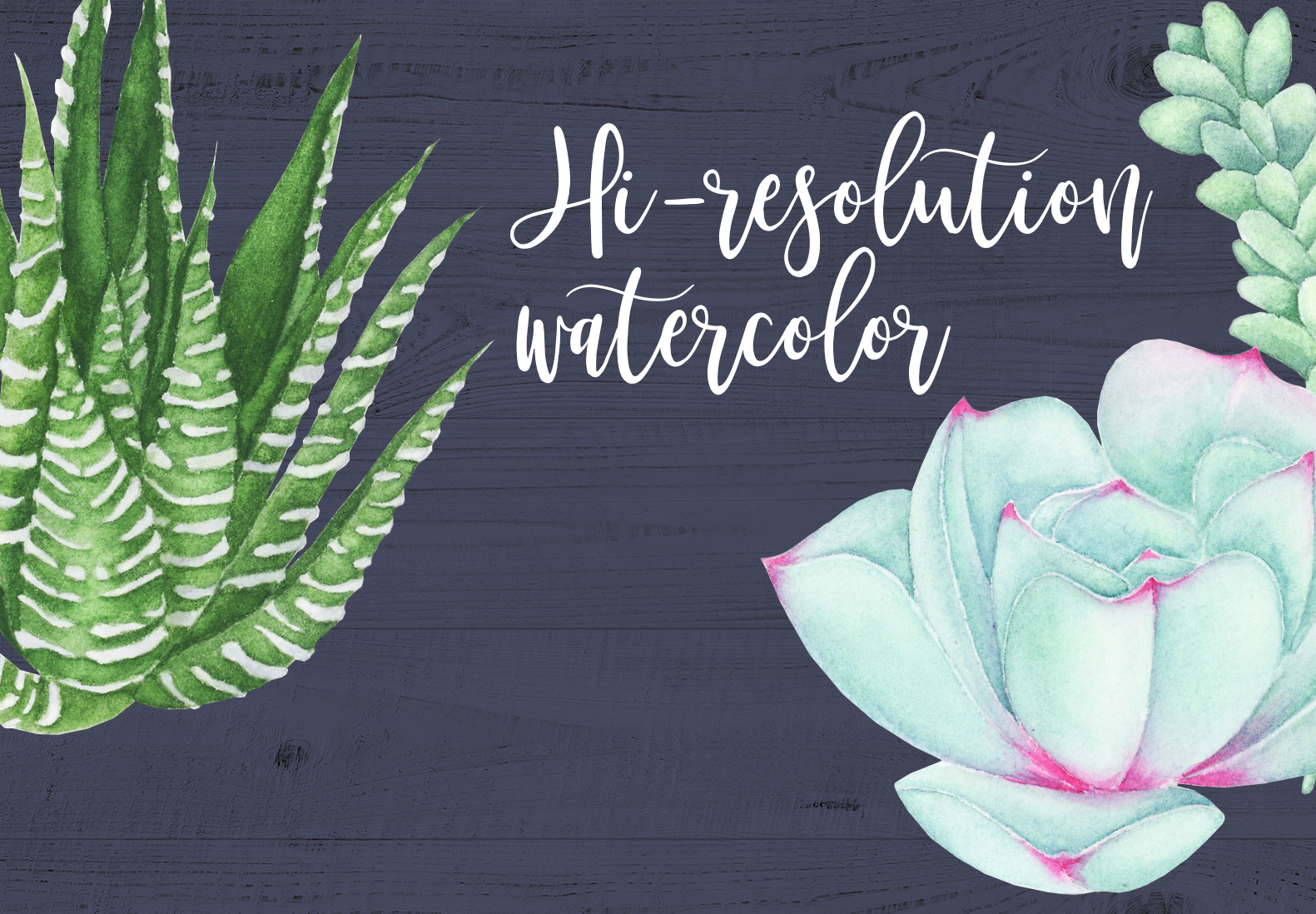 Watercolor Succulents Clipart example image 3