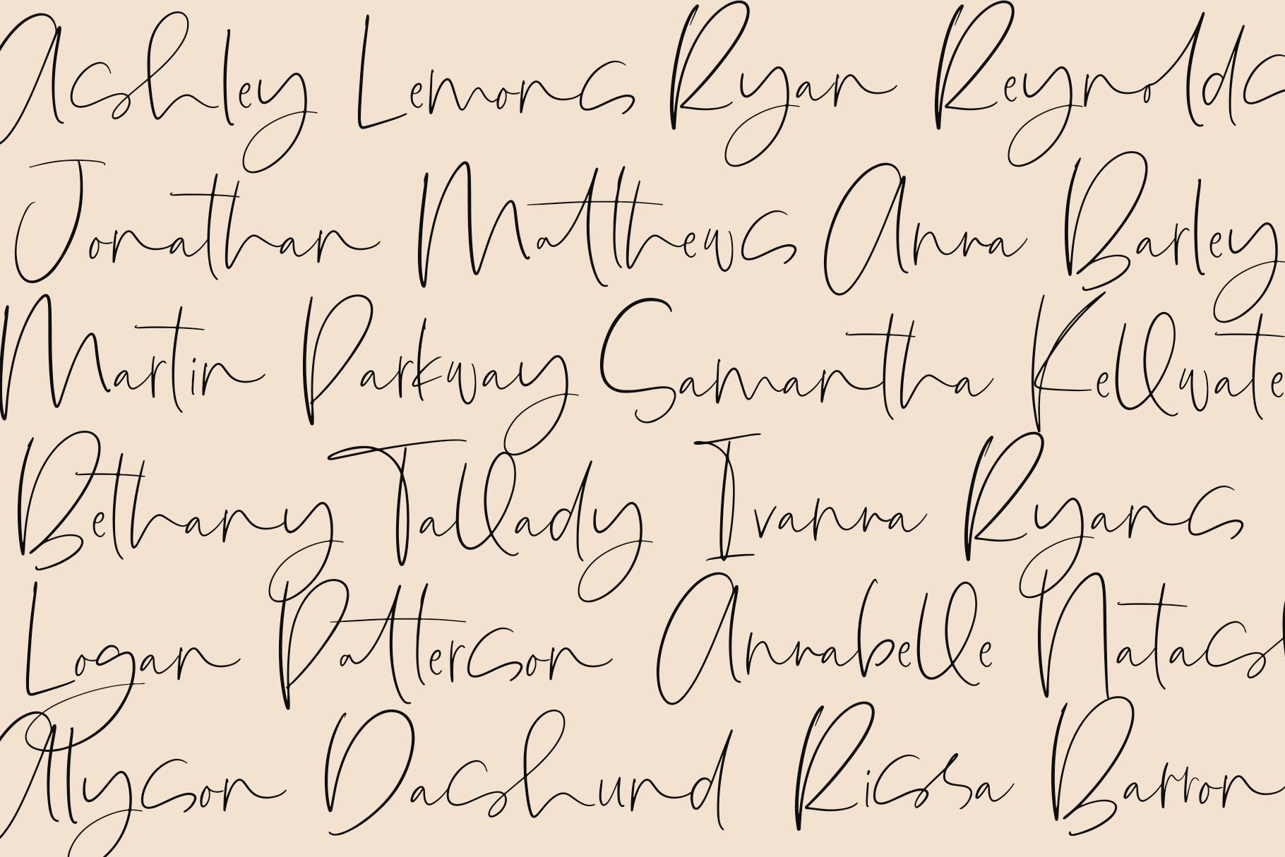 Lionness - A Handwritten Script Font example image 19