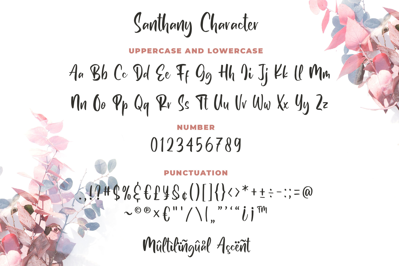 Santhany - Handwritten Typeface example image 2