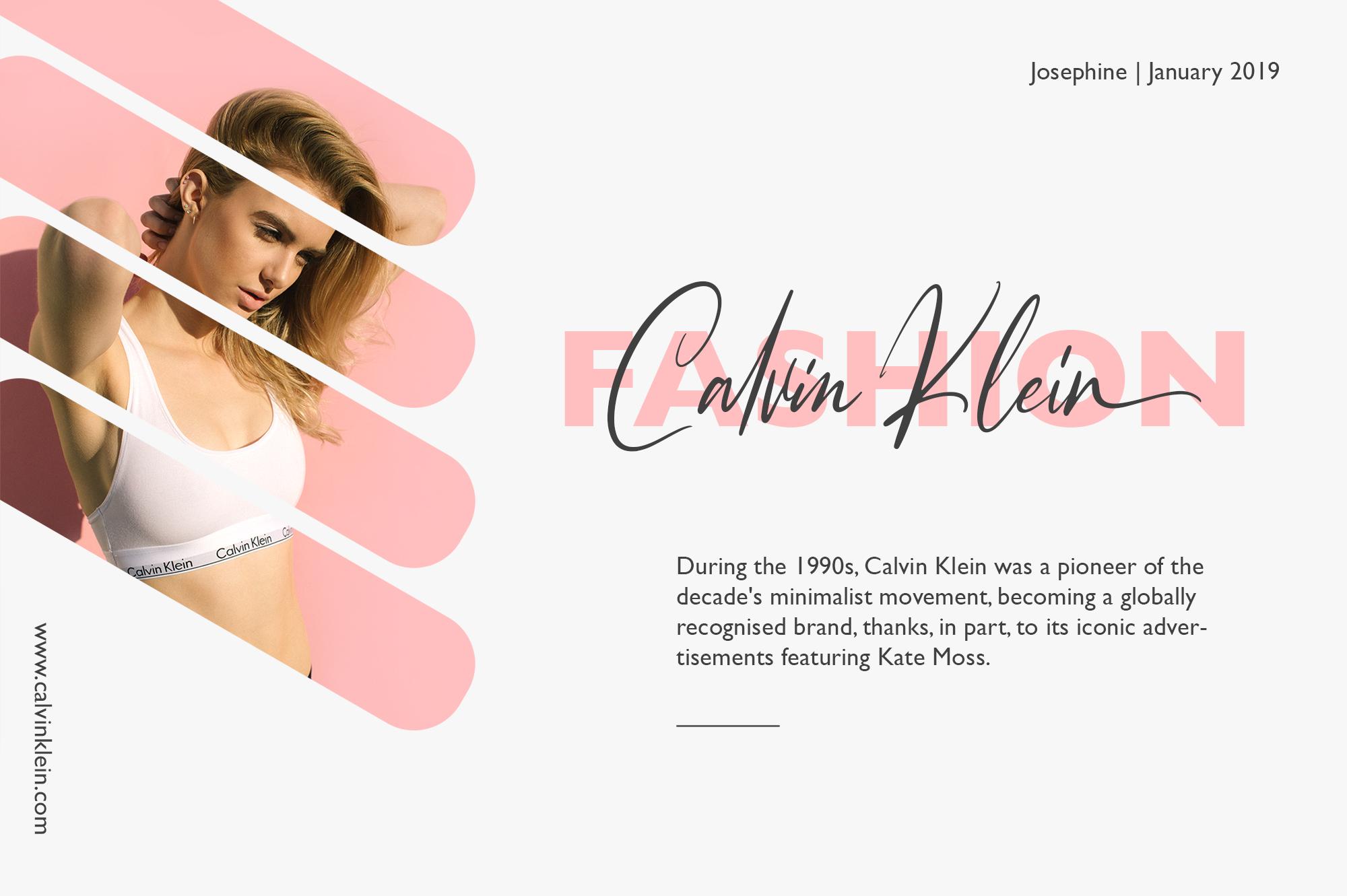 Josephine Fashionable Script Font example image 4