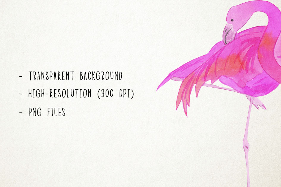 Watercolor Flamingo Clipart, Flamingo Clip Art, Flamingo PNG example image 3