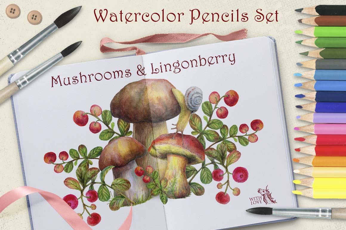 Mushrooms and Lingonberry Set example image 7