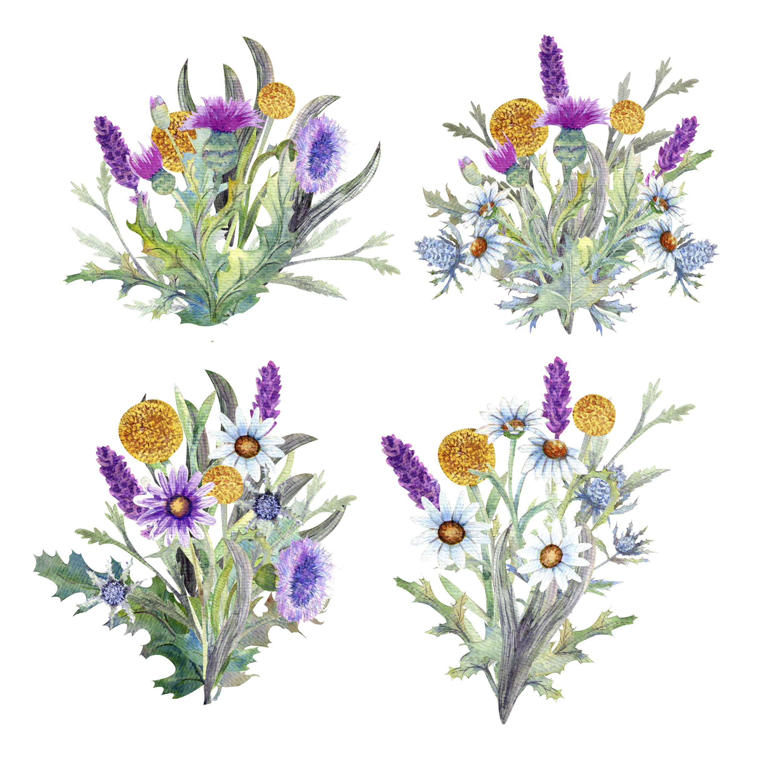 Wild flowers watercolor example image 5