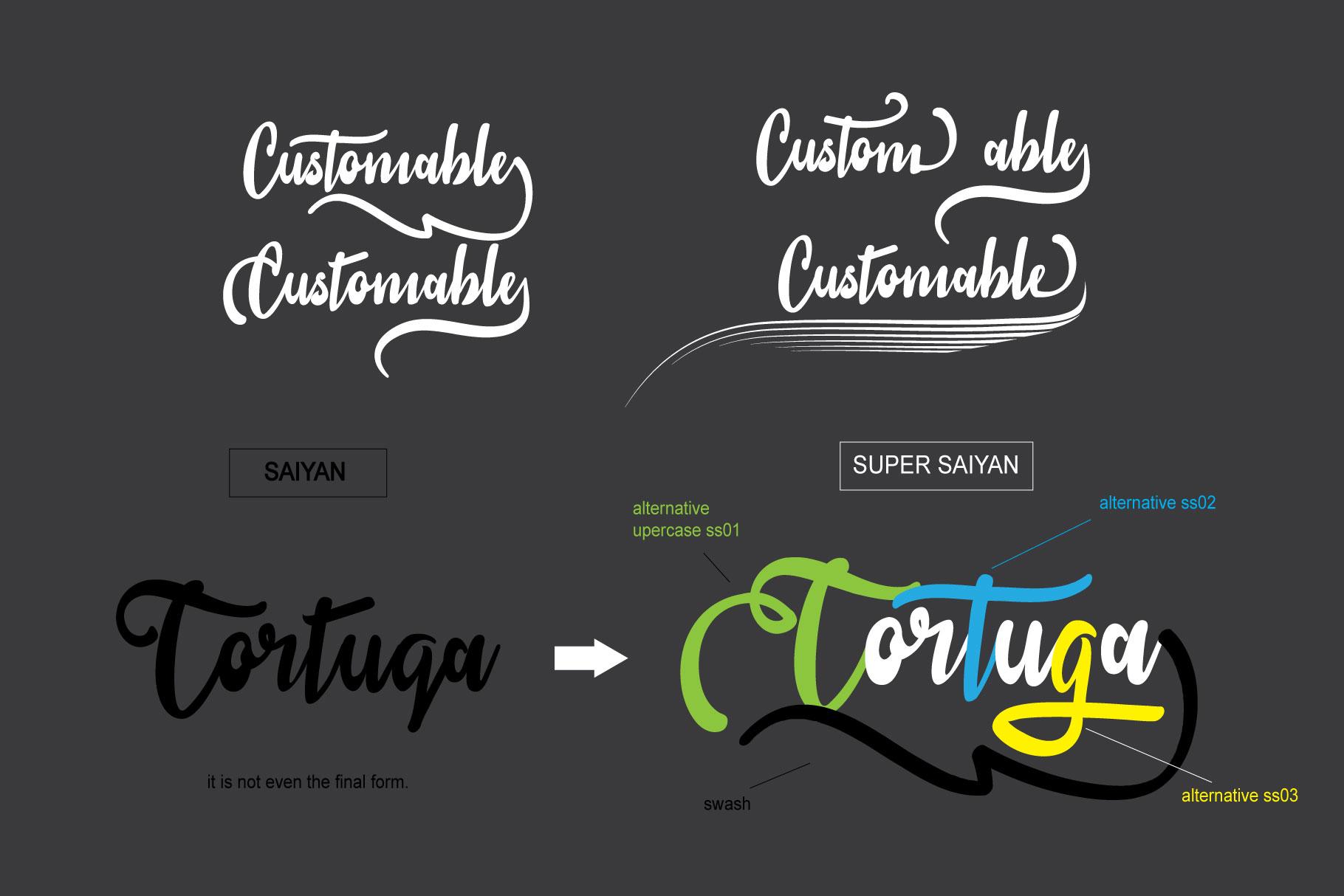 sail tortuga example image 2