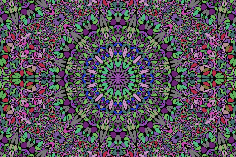 48 Seamless Floral Mandala Patterns example image 9