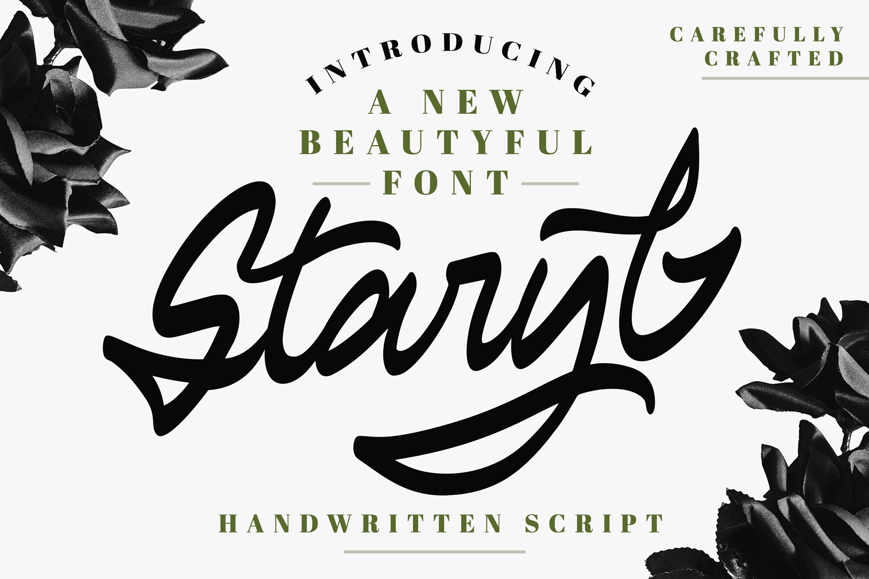 Staryl | Handwritten Script Font example image 1