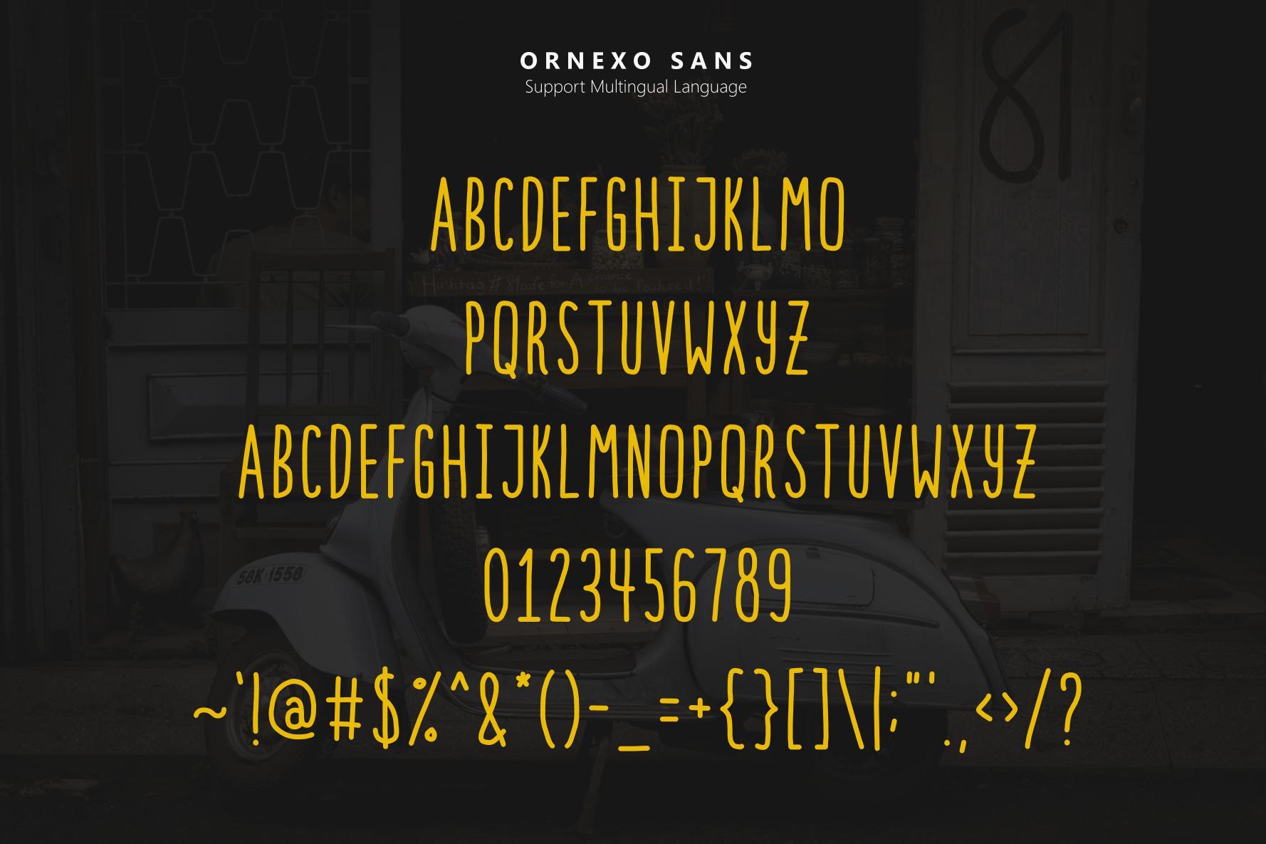 30% OFF! Ornexo + Extras + BIG Bonus example image 5