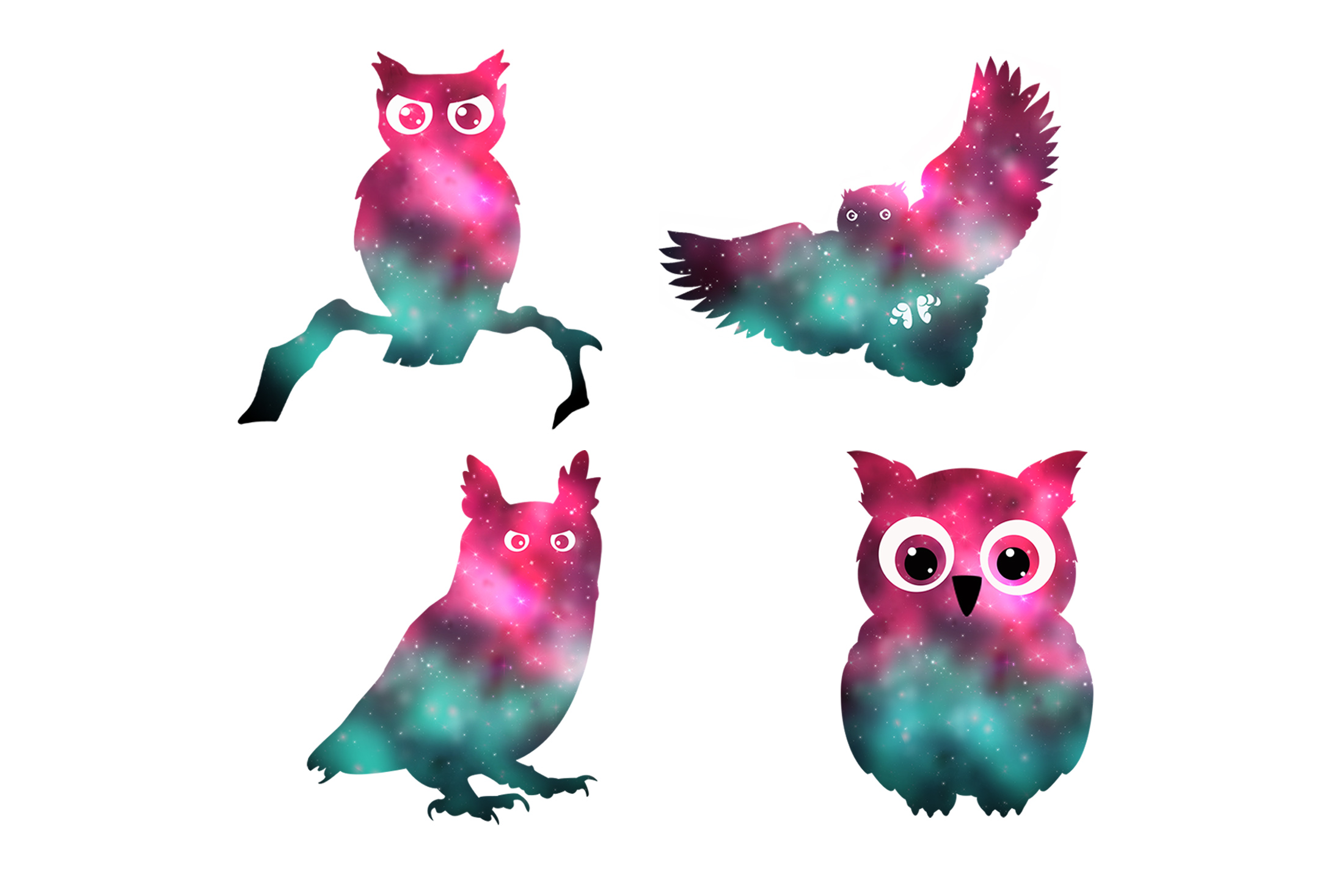 Owls example image 2