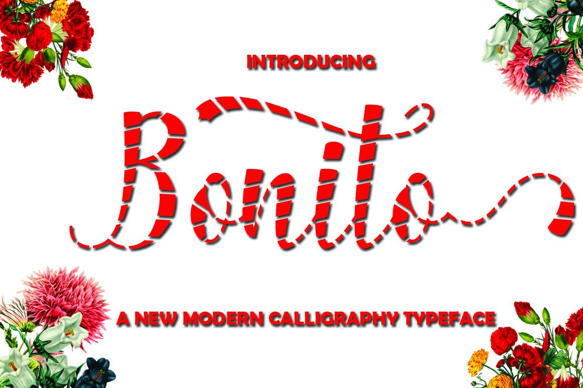 Bonito example image 1