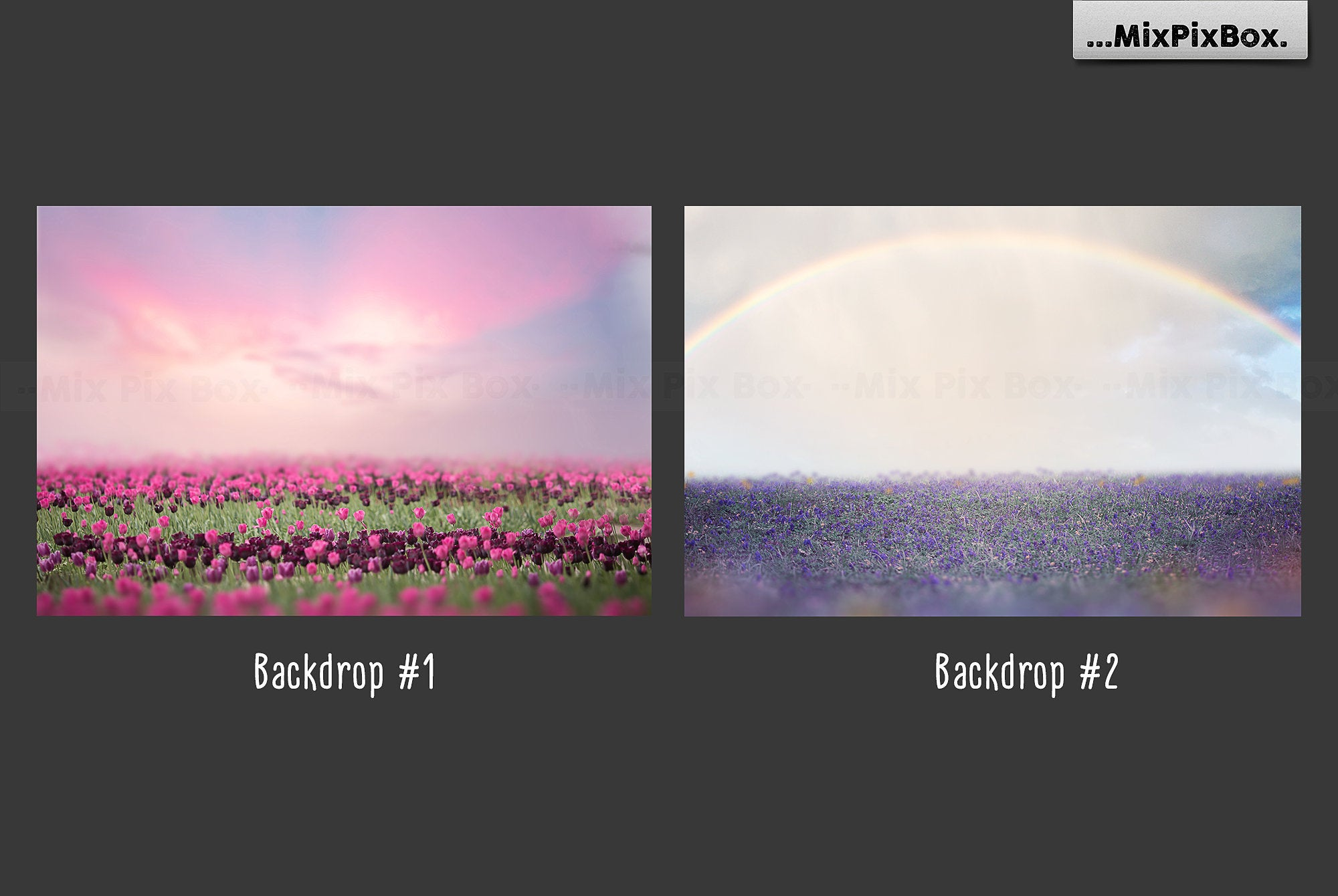 Unicorn PNG Overlays and Backdrops Pack example image 5