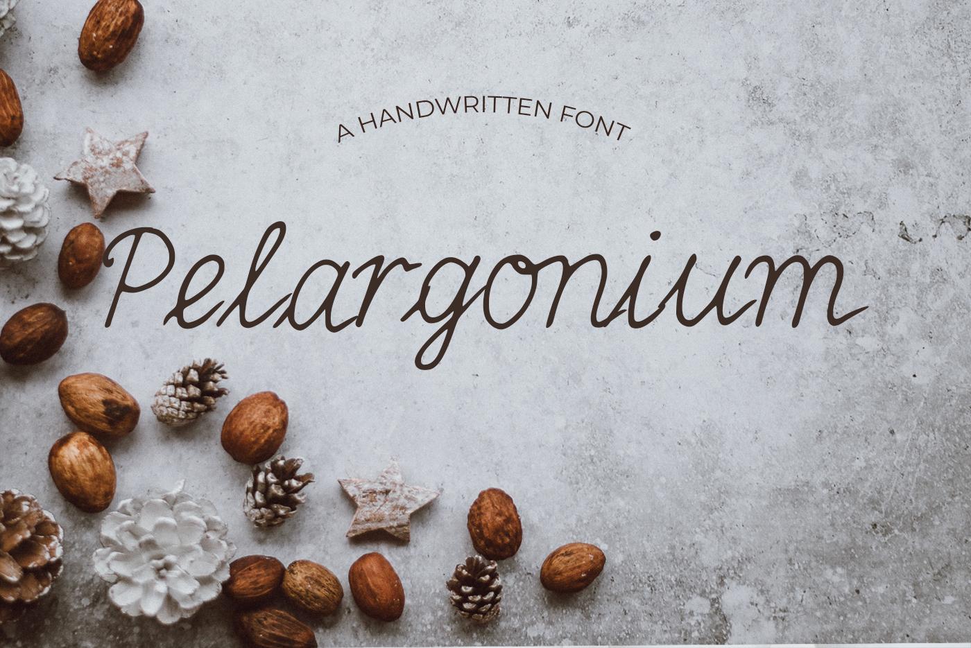 15 Creative Handmade Fonts Bundle example image 13