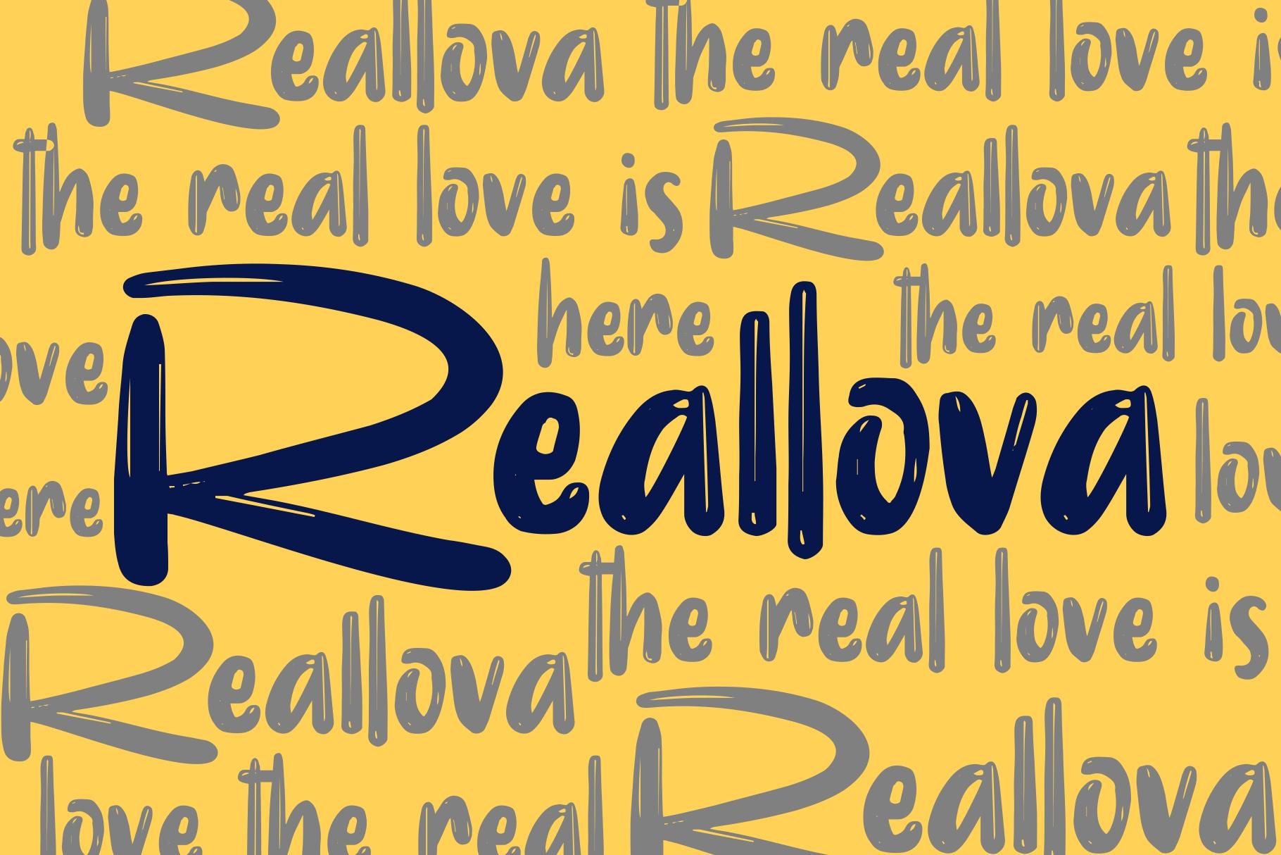 Realova example image 6