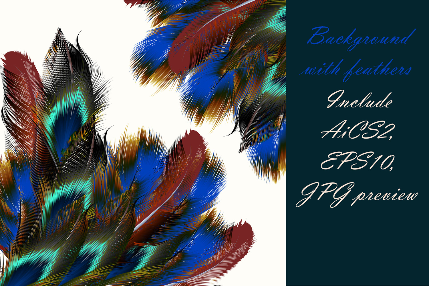Colorful feather bundle. Vector illustrations and elements example image 3