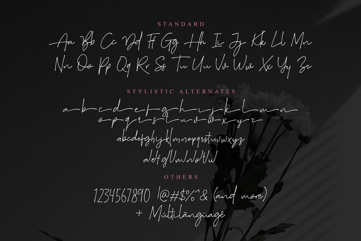 Suddenly - Signature Script example image 7