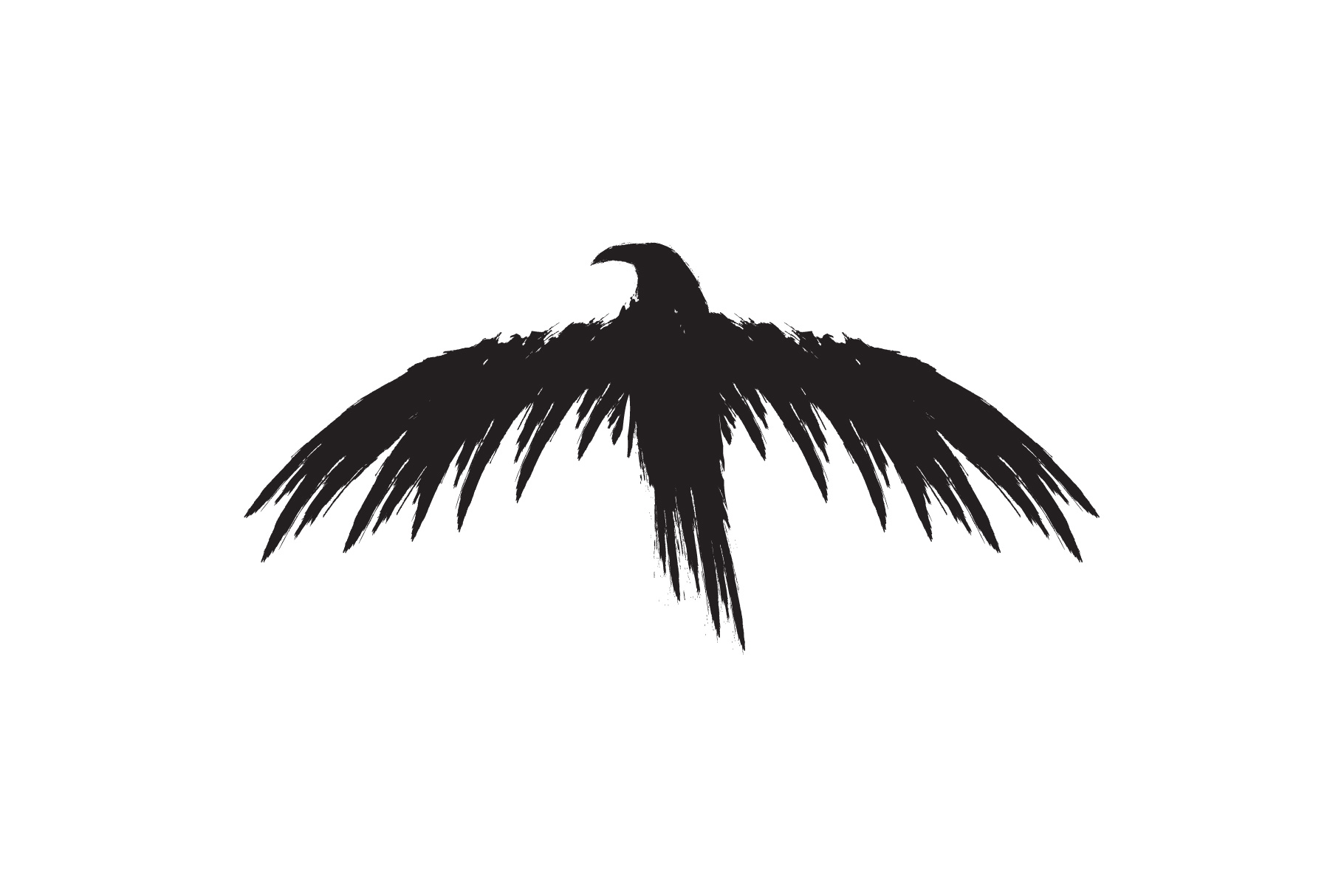 Black raven crow body and wings. example image 6