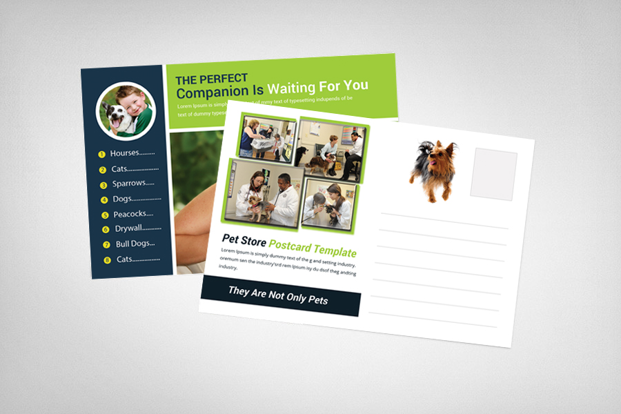 Pet Clinic & Shop Postcard Template example image 2