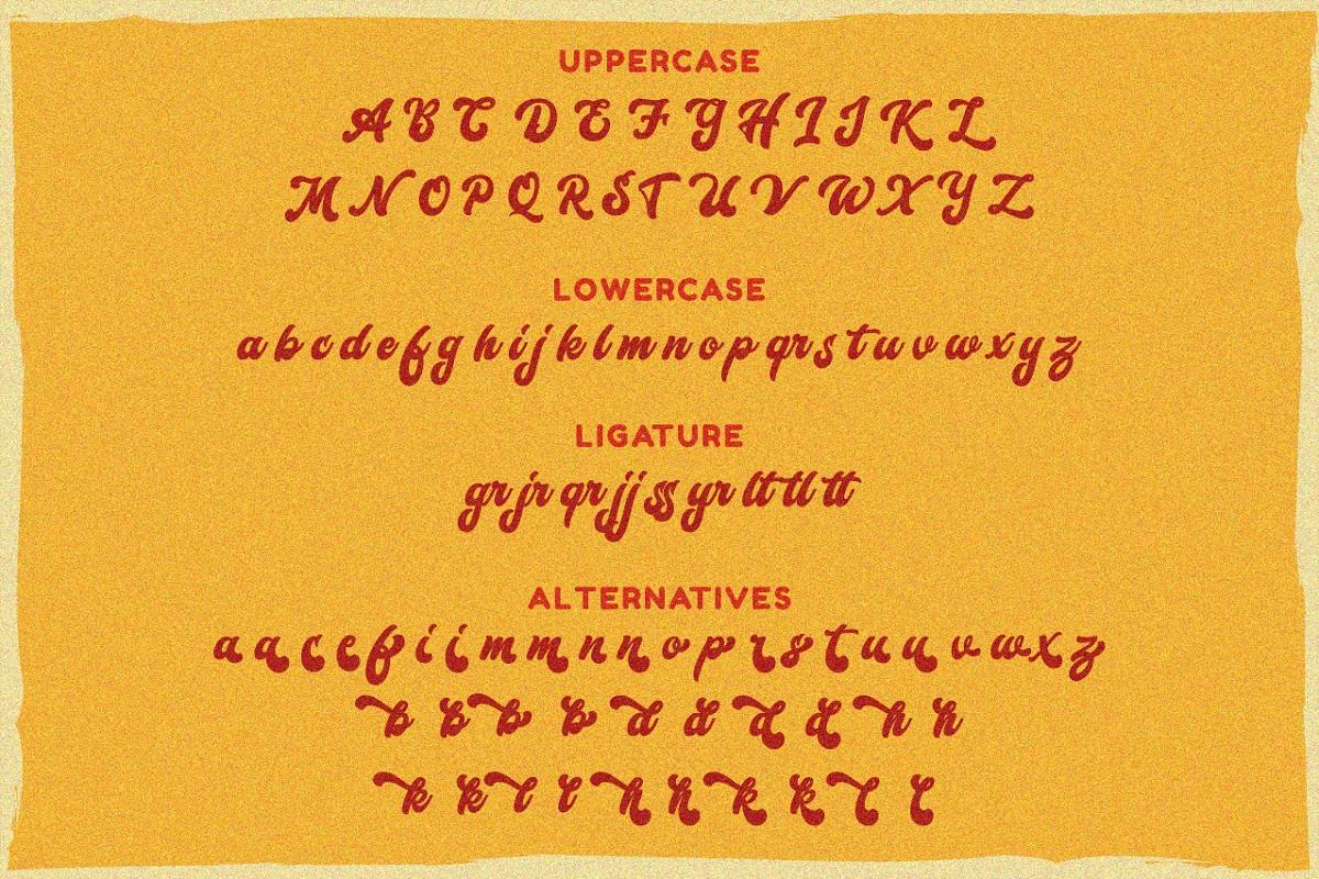 Karolin - Retro Font example image 6