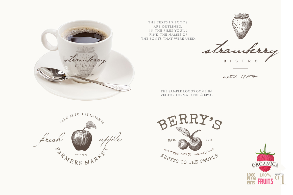 ORGANIC LOGO ELEMENTS  FRUITS example image 9